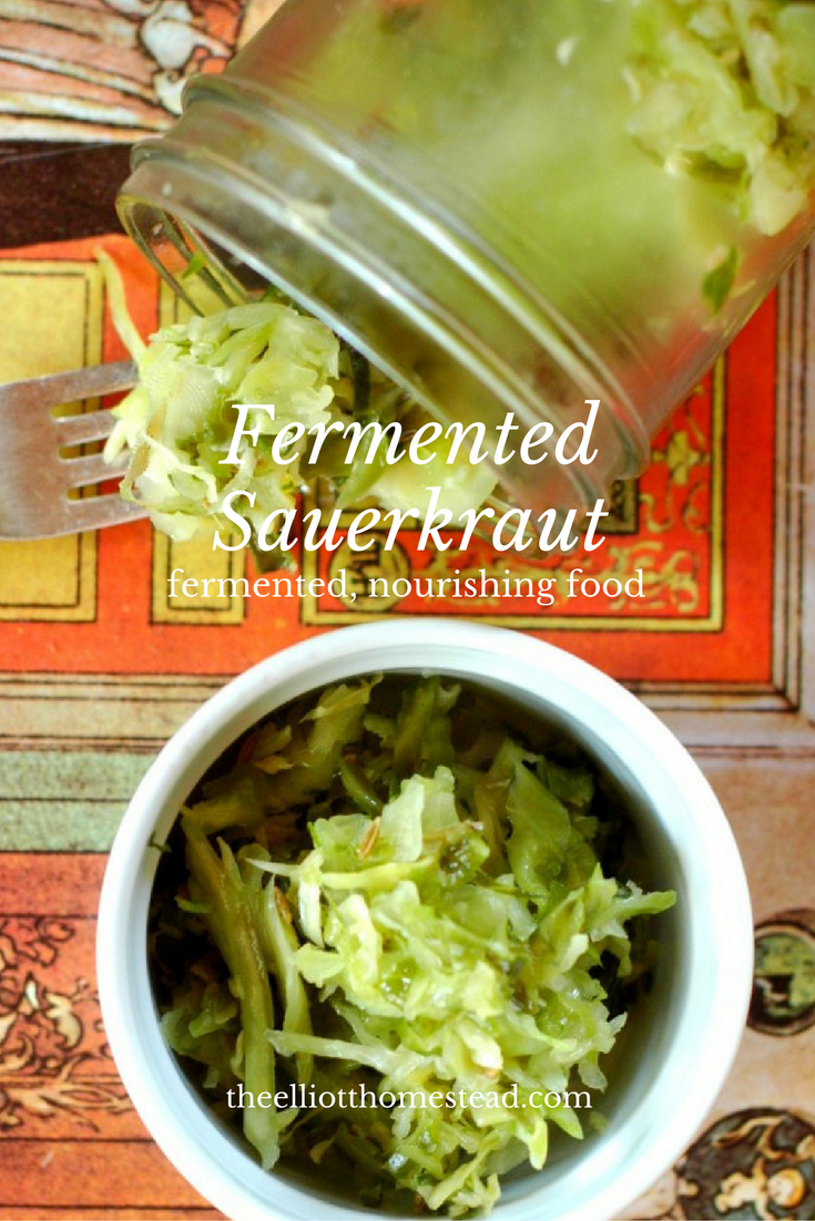 Fermented Sauerkraut Recipe from theelliotthomestead.com