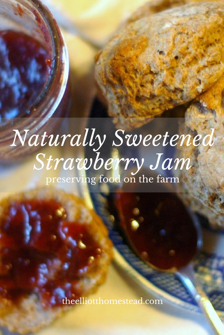 Naturally Sweetened Strawberry Jam Recipe