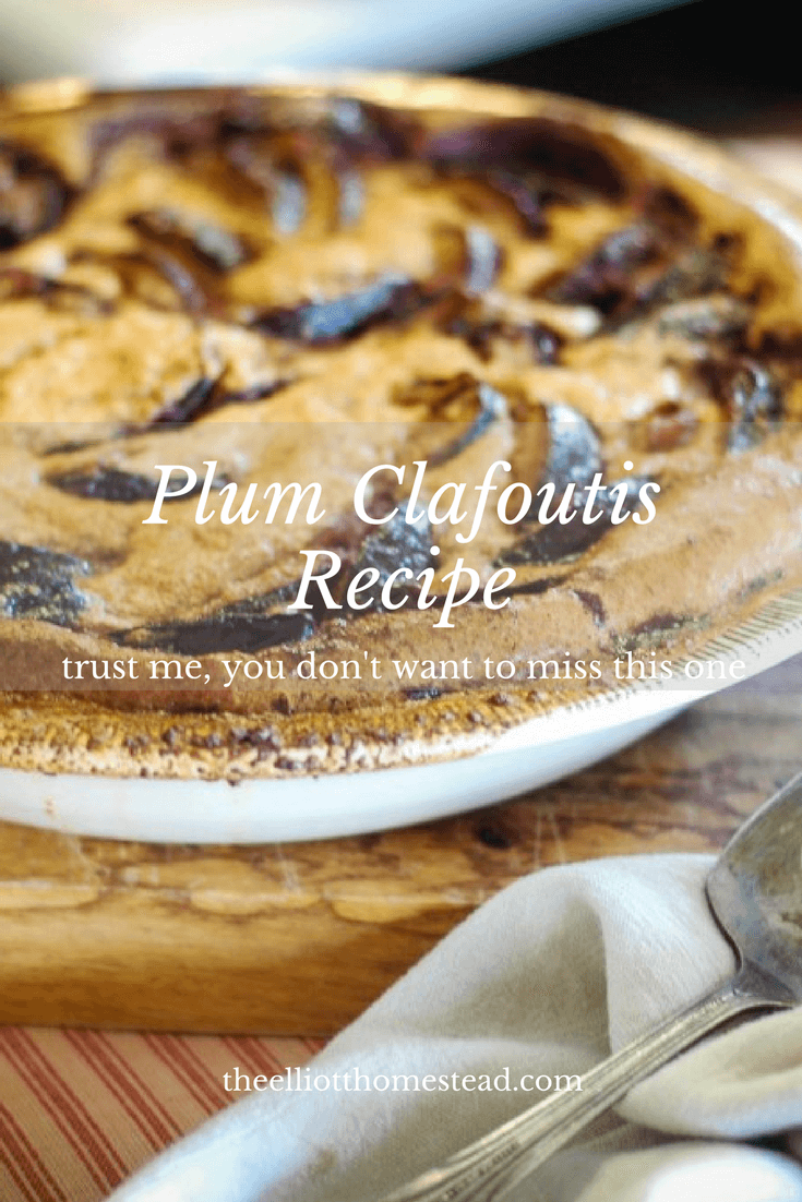 Plum Clafoutis Recipe