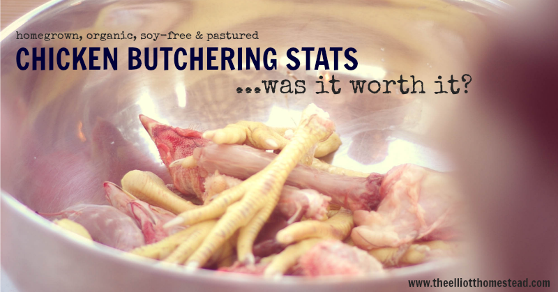 chickenbutcheringstats