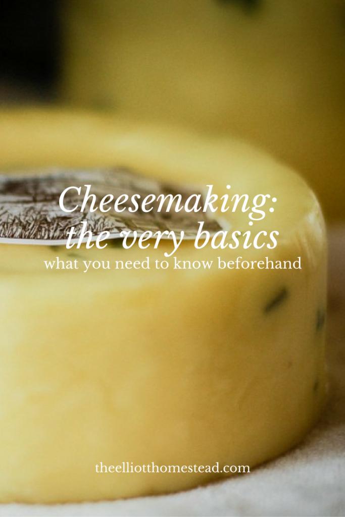 cheesemaking-the-basics