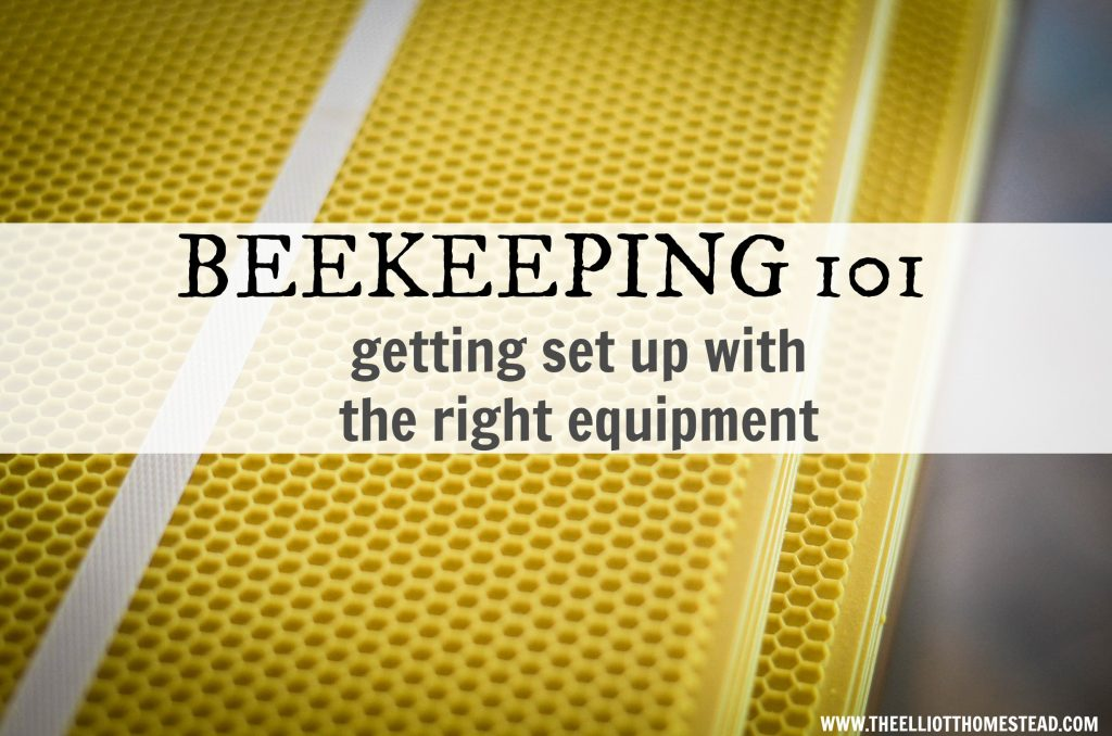 Beekeeping 101: getting set up with the right equipment