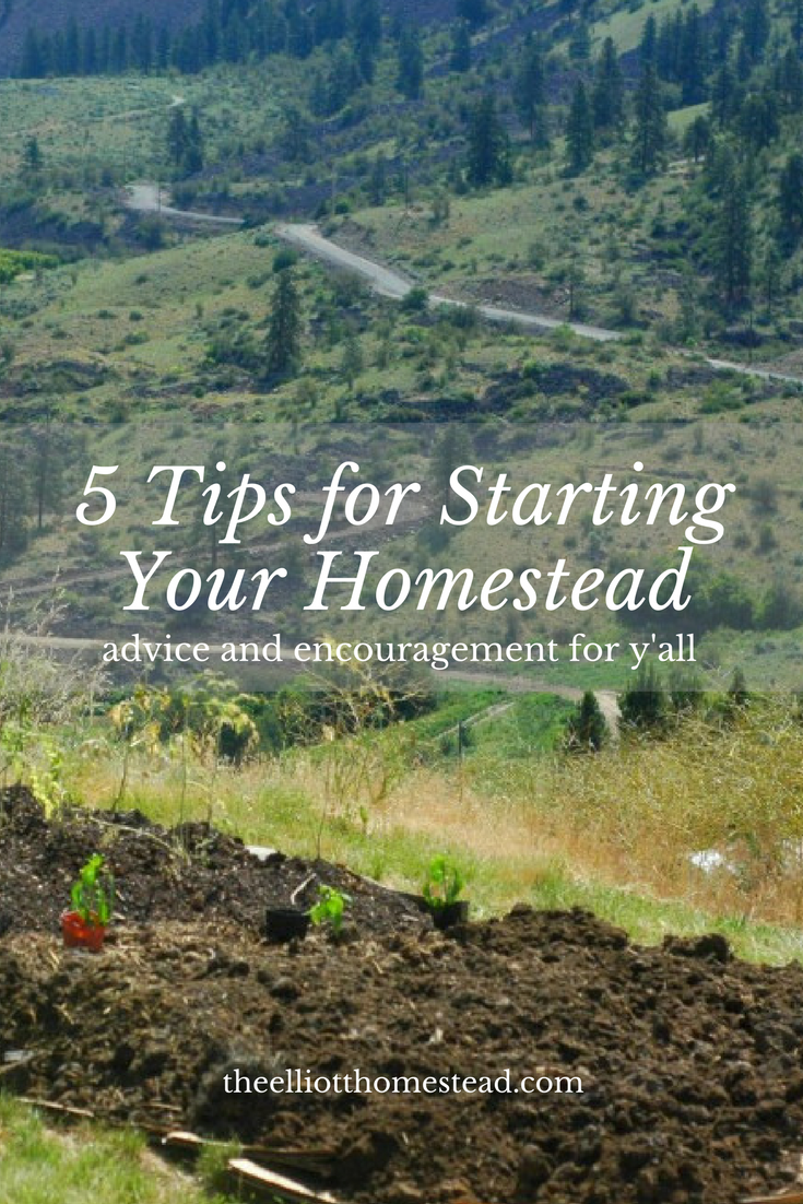 5 Tips For Starting Your Homestead | The Elliott Homestead (.com)