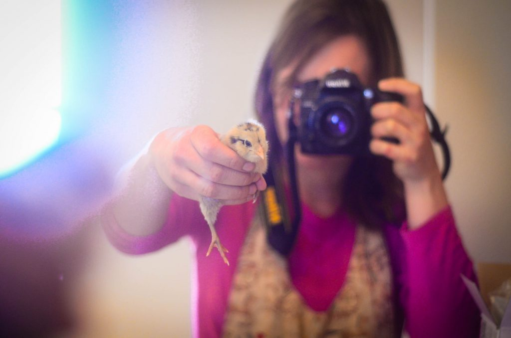Shaye holding up a baby chick for a mirror selfie