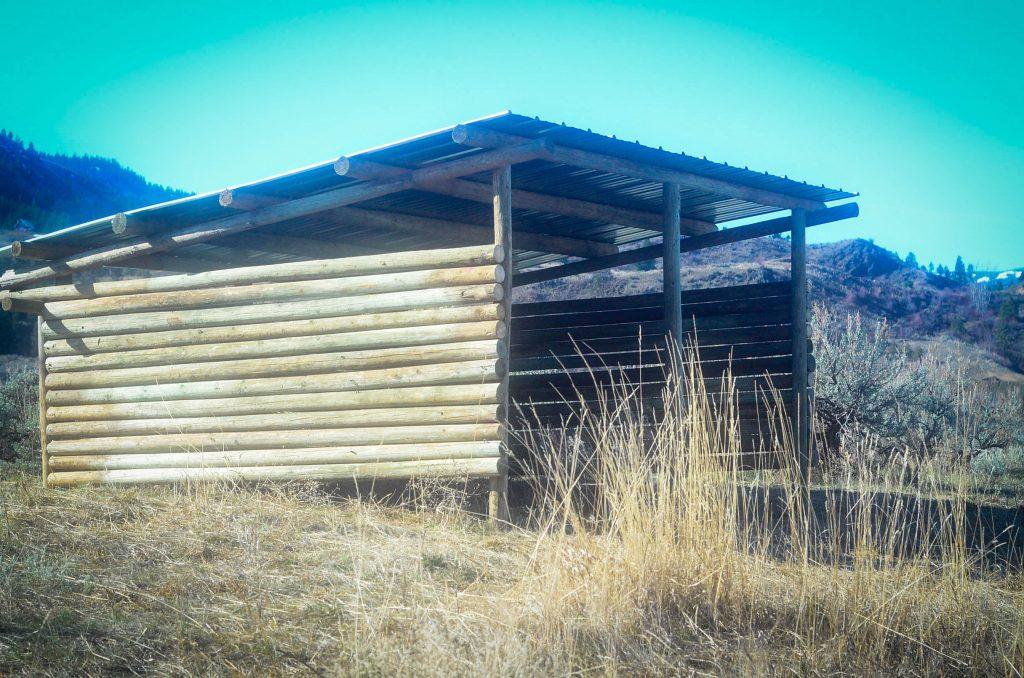 completed pig shelter