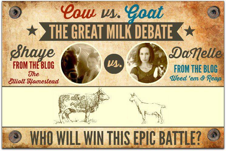 Cow vs. Goat: The Great Milk Debate | The Elliott Homestead (.com)