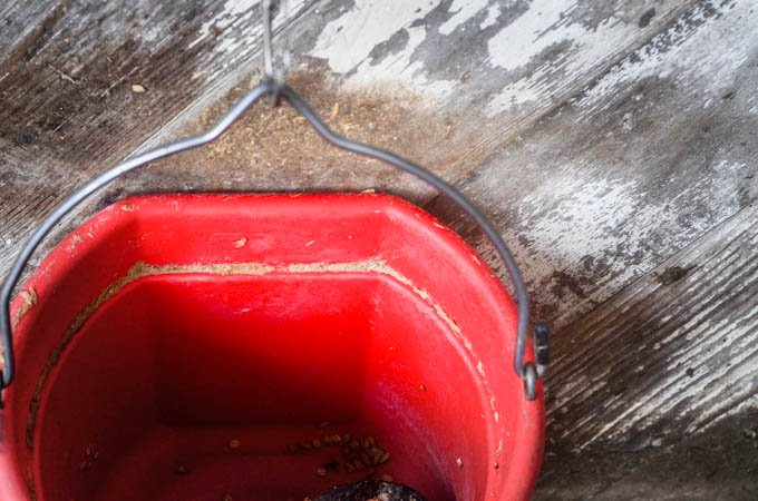 hanging red bucket against weathered wood painted white