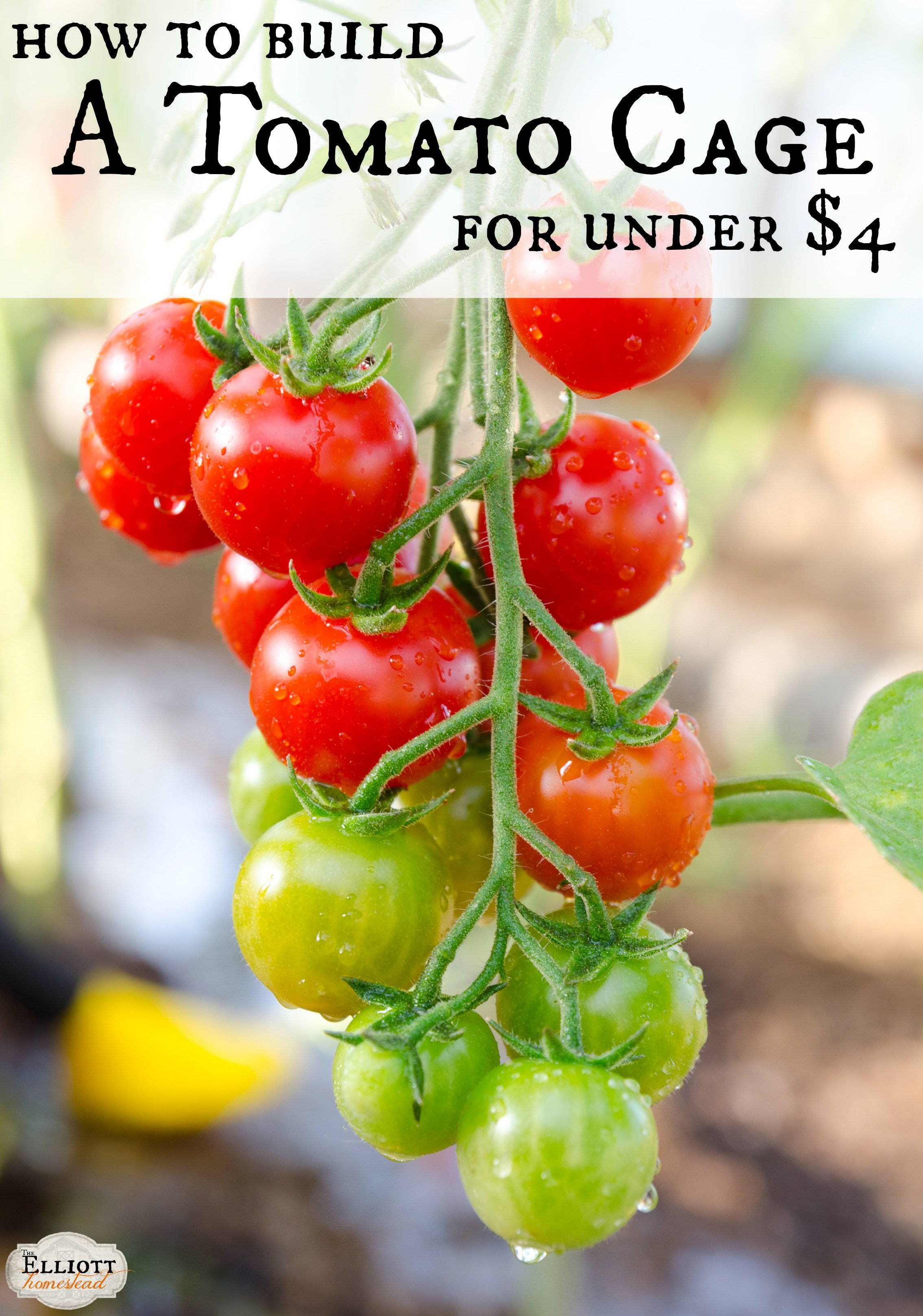 How To Build A Tomato Cage For Under 4 The Elliott