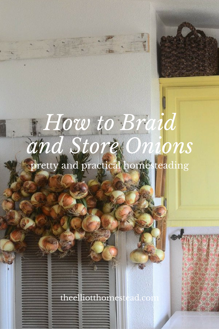 how-to-braid-and-store-onions