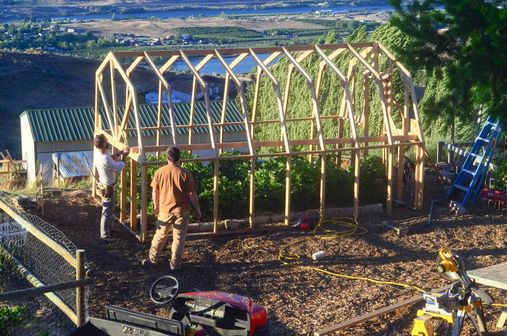 full view of a completed frame of a greenhouse