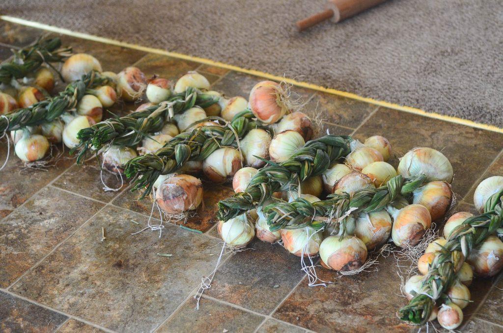 Line of onion braids at The Elliott Homestead