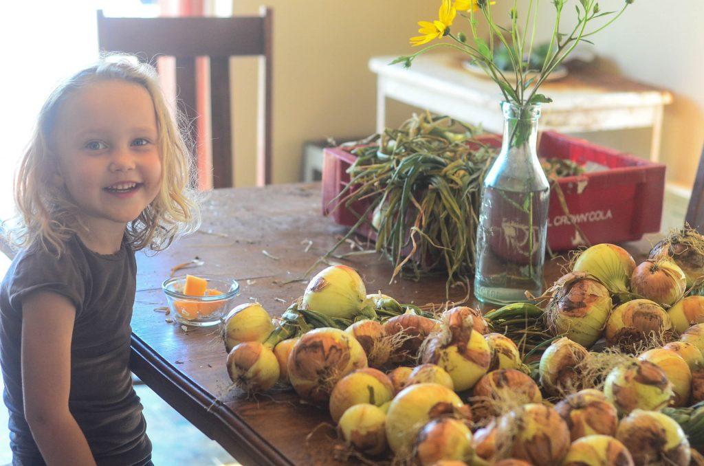 Georgia with the onion harvest on The Elliott Homestead