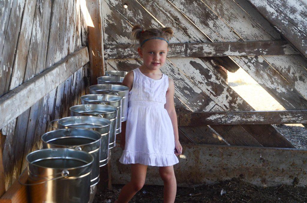 Life of a farmgirl...   The Elliott Homestead (.com)