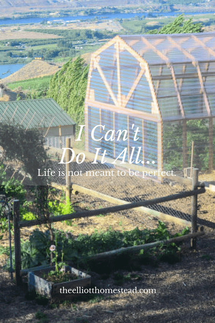 I can't do it all | The Elliott Homestead (.com)
