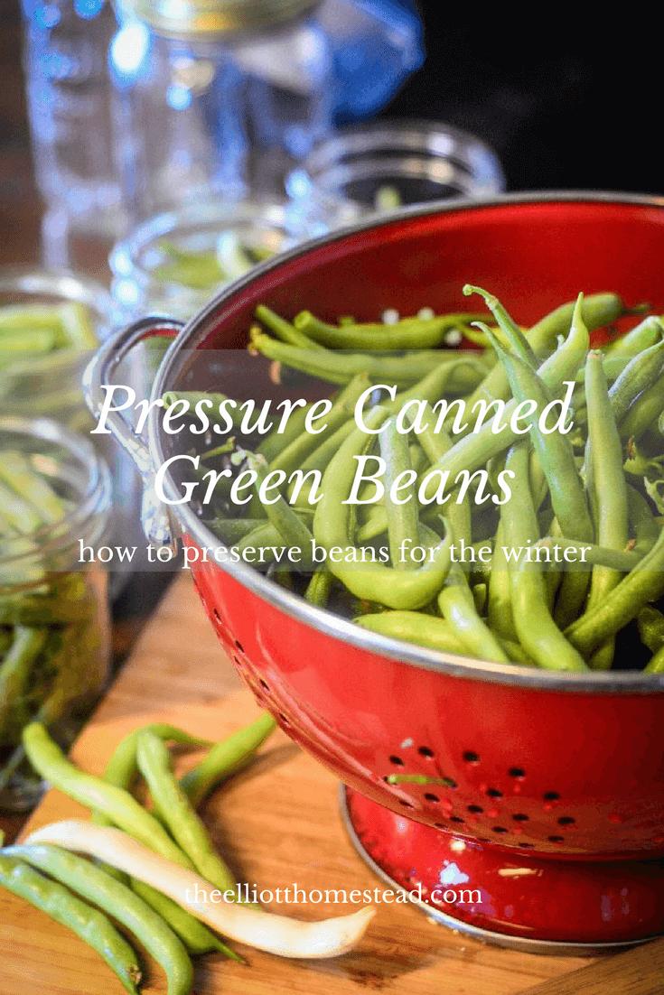 Pressure Canned Green Beans | The Elliott Homestead (.com)