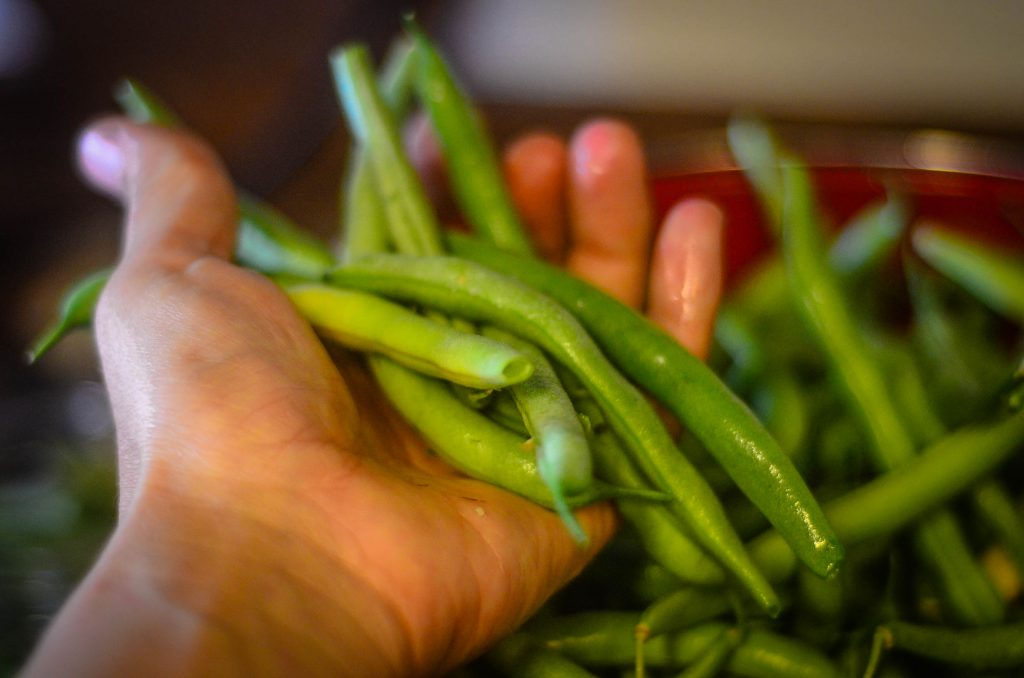 Washed and ready to preserve for Pressure Canned Green Beans! | The Elliott Homestead (.com)