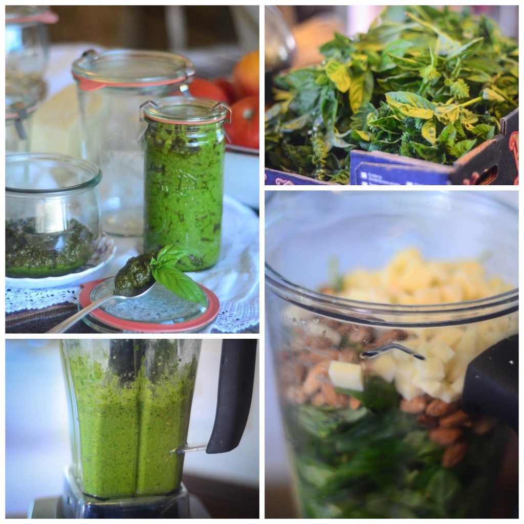 Homemade Pesto Recipe | The Elliott Homestead (.com)