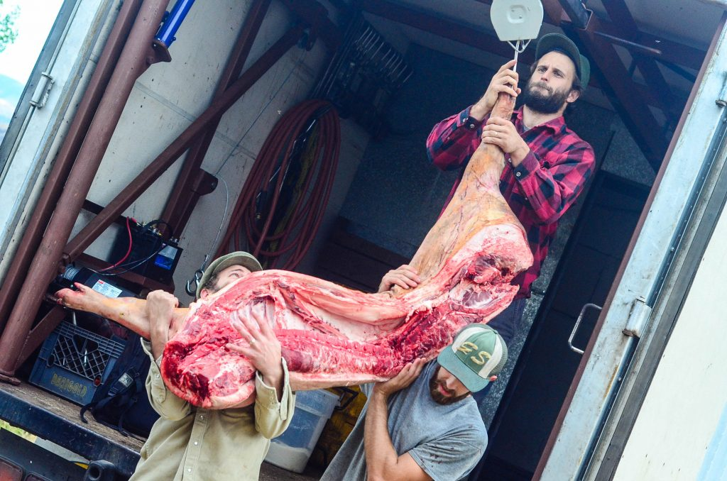 Butchering a Pig: Roughly 115 pounds per side | The Elliott Homestead