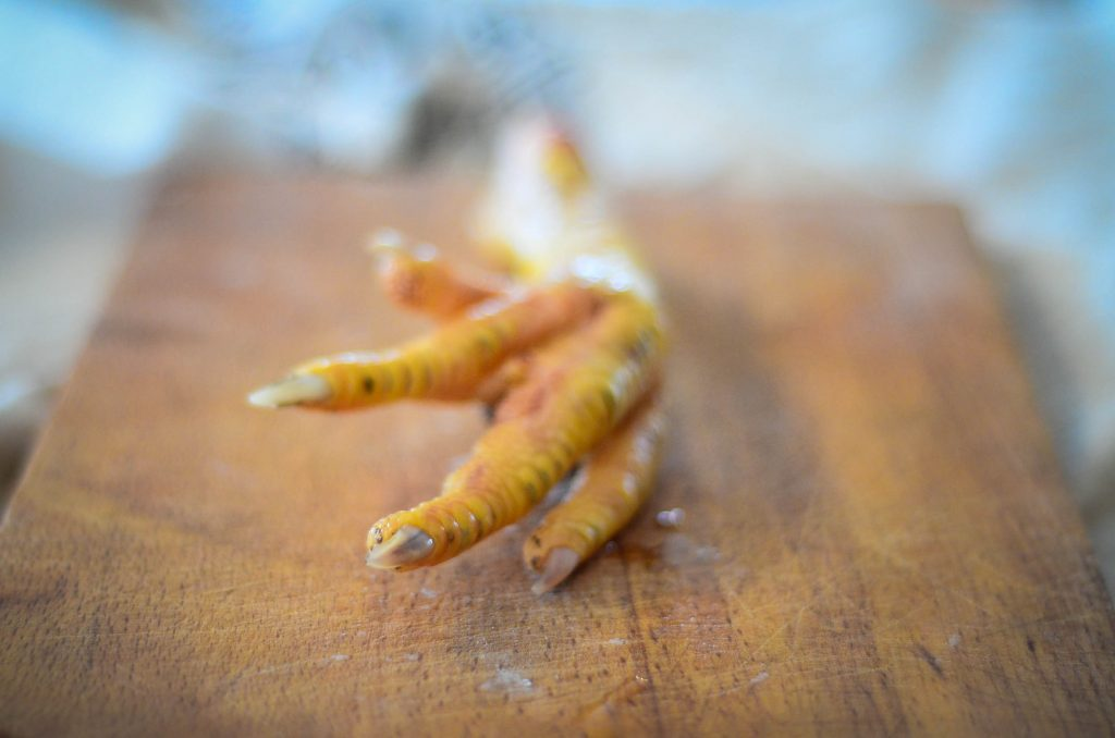 A chicken's foot, freshly harvested | The Elliott Homestead