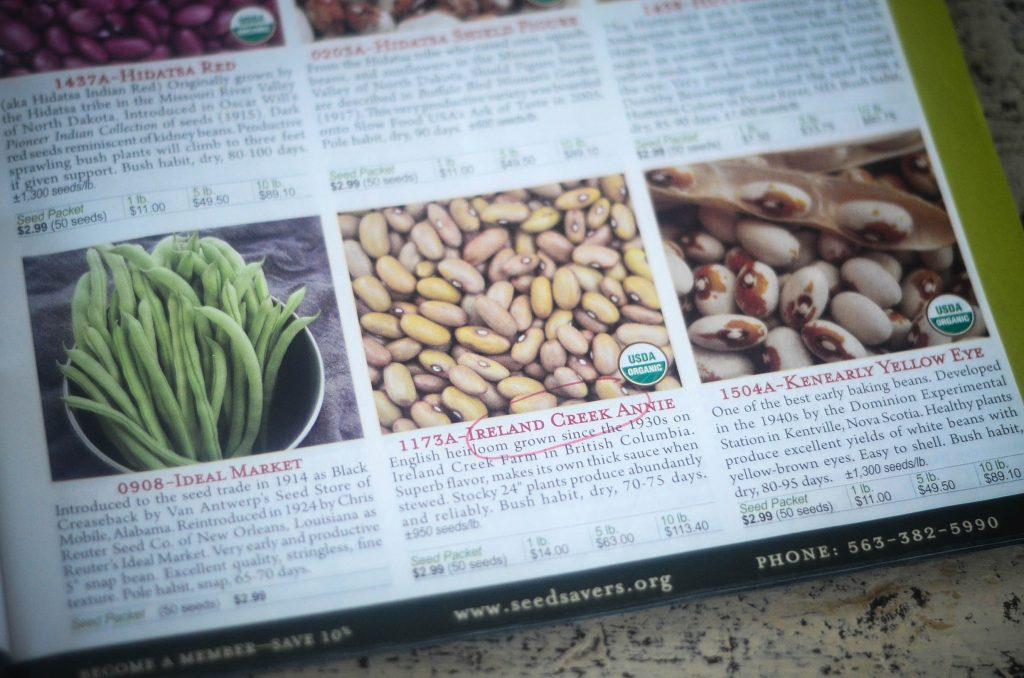 The Importance of Heirloom Seeds | The Elliott Homestead (.com)