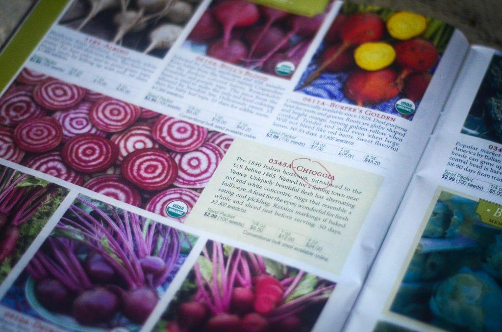 ... my favorite heirloom beet varieties! | The Elliott Homestead