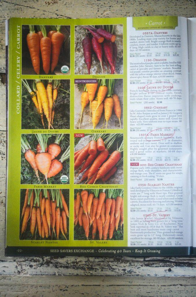 The beauty of diversity in heirloom vegetables! | The Elliott Homestead