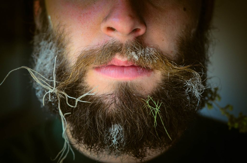 Close up shot of stuff stuck in Stuart's beard