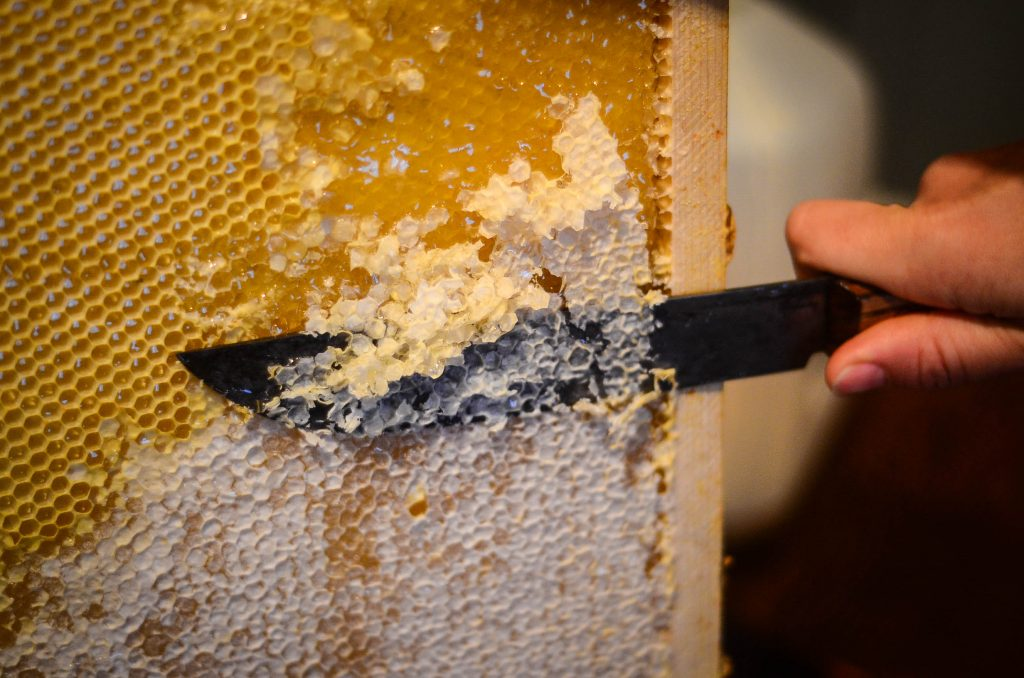Capping The Honey Comb | The Elliott Homestead