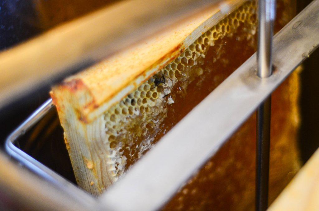 Harvesting Honey Using An Extractor | The Elliott Homestead (.com)