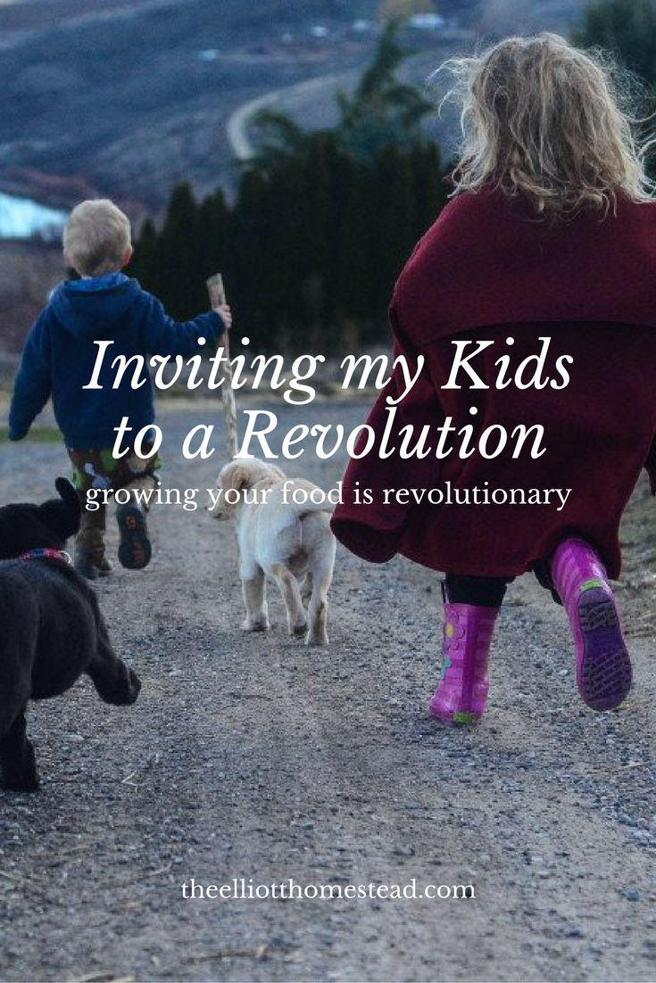 inviting-my-children-to-a-revolution