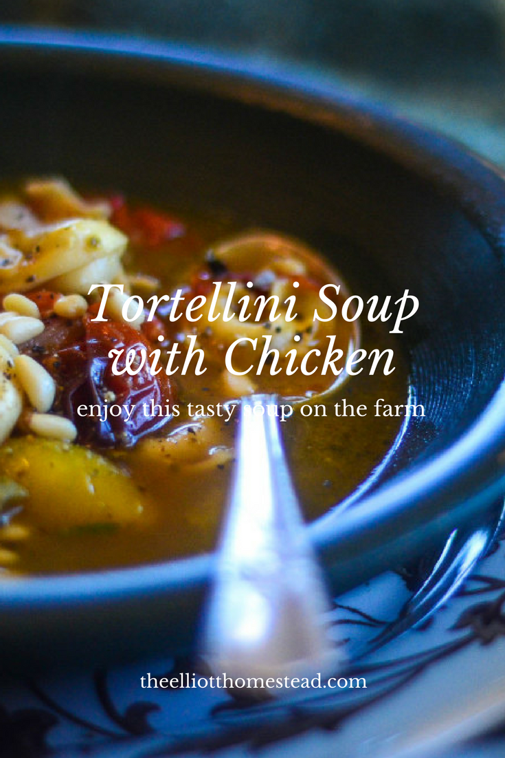 Tortellini Soup with Chicken and Pine Nuts | The Elliott Homestead