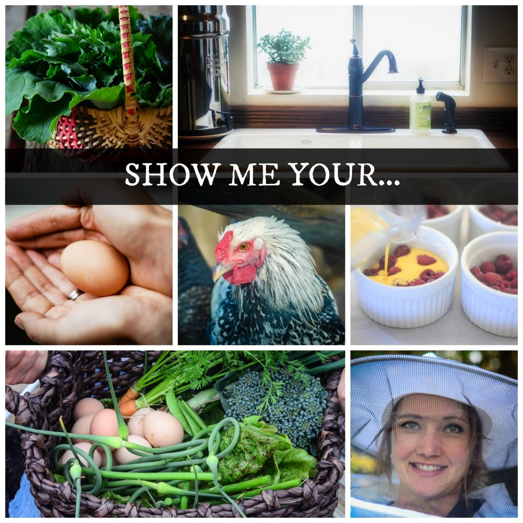 Show Me Your... Reader Photograph Submission Contest! | The Elliott Homestead
