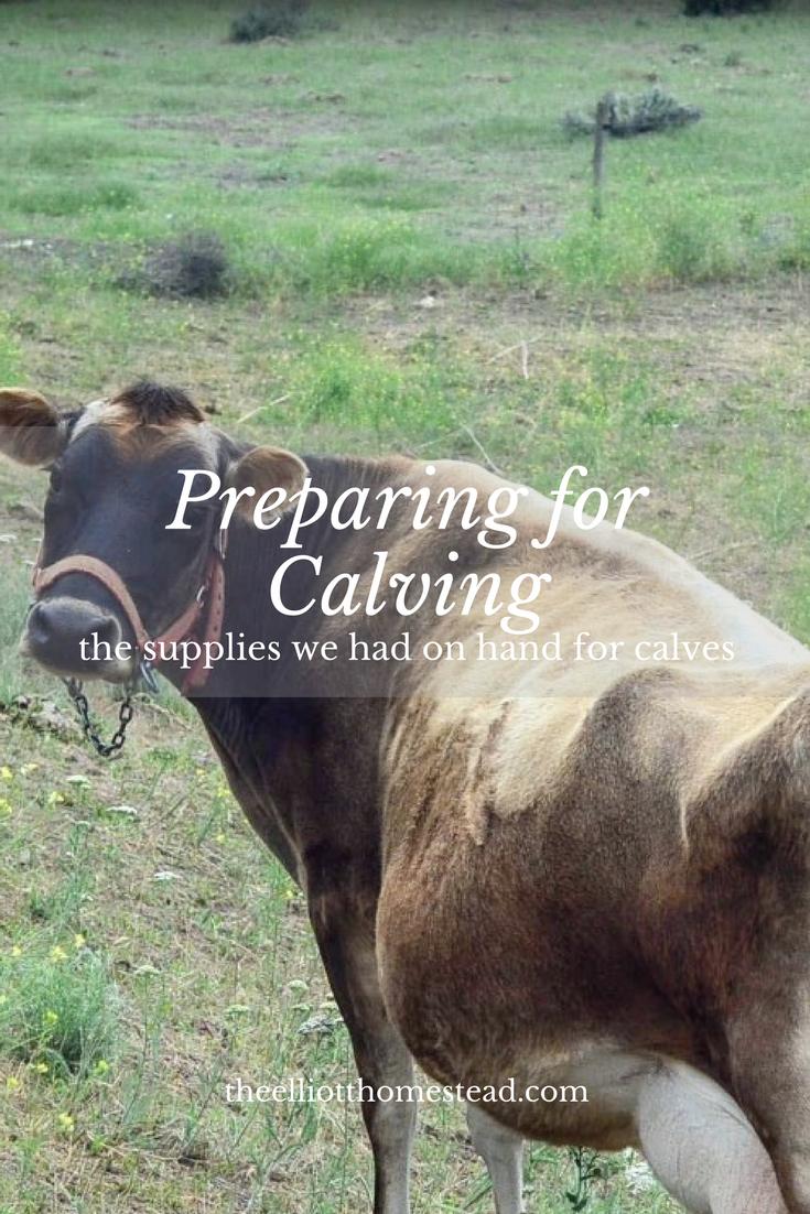 Preparing for Calving