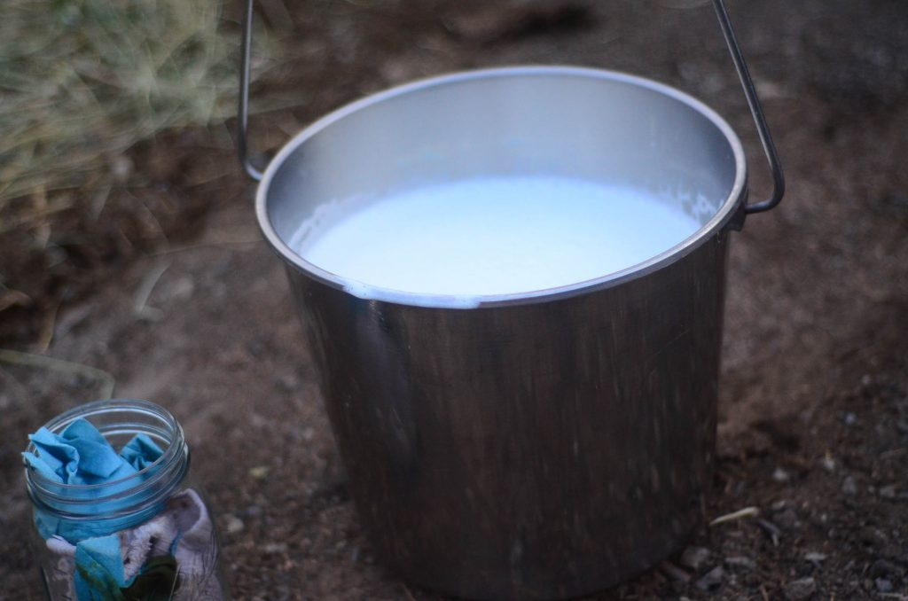 Fresh, raw milk | The Elliott Homestead