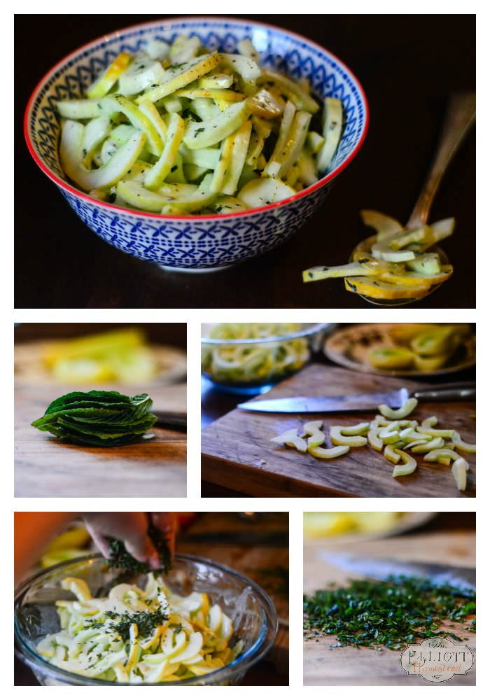Cucumber Salad with Mint | The Elliott Homestead