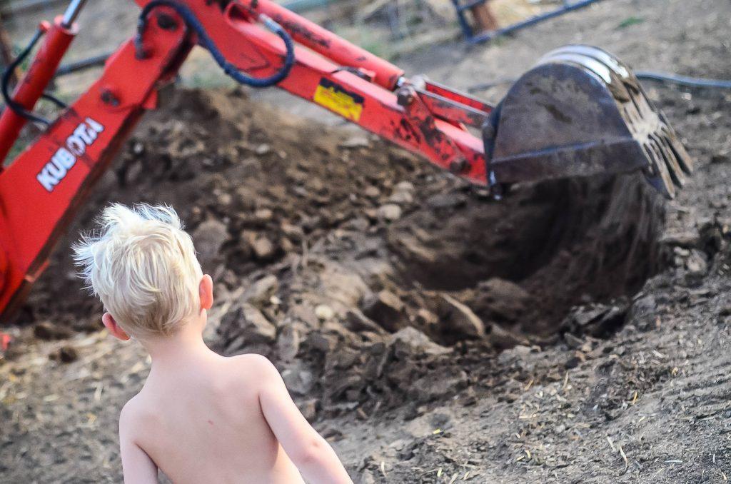 Tough farm lessons   The Elliott Homestead