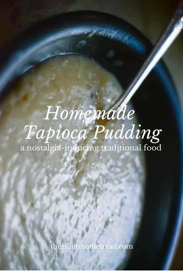 Homemade Tapioca Pudding | The Elliott Homestead (.com)