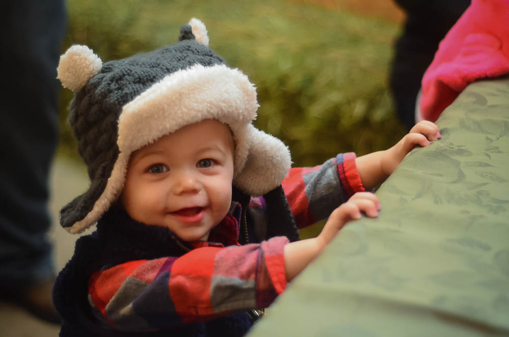 Baby Jude on Thanksgiving | The Elliott Homestead