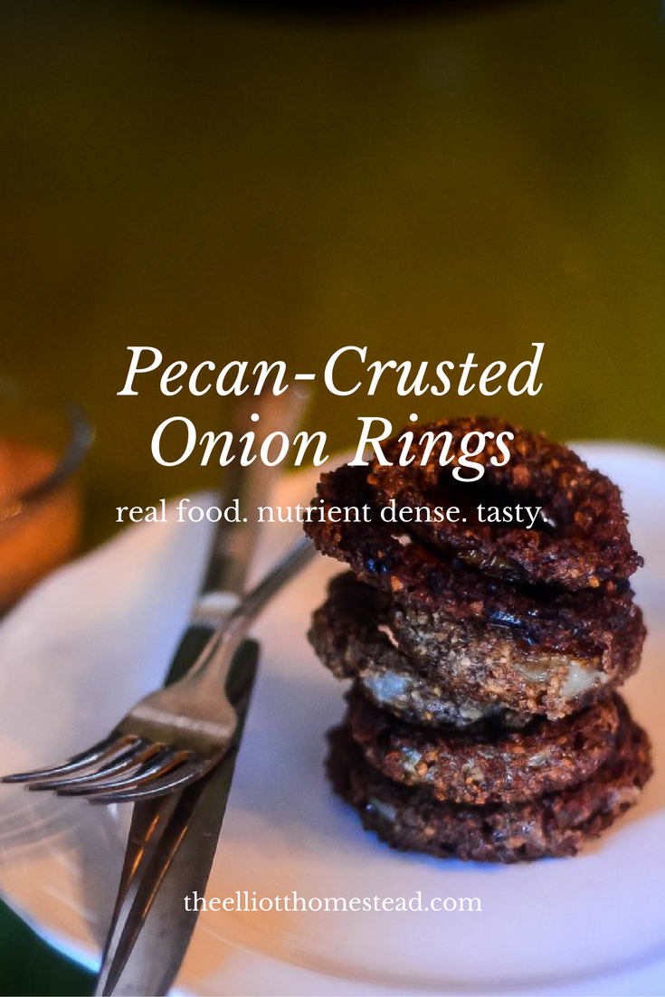 Homemade Pecan-Crusted Onion Rings | The Elliott Homestad (.com)