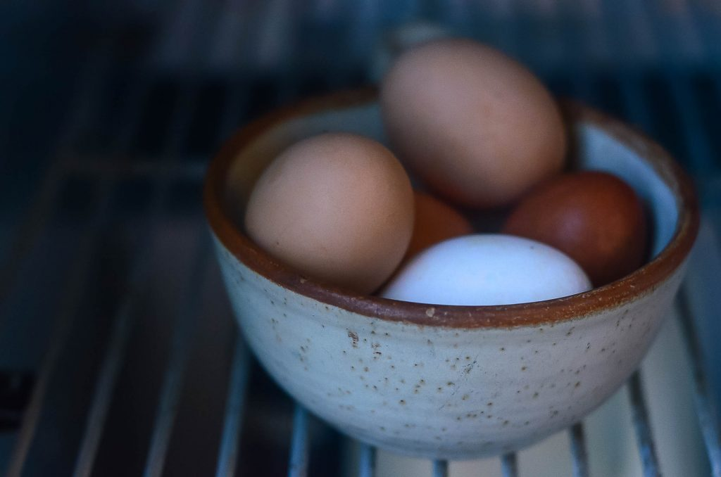 Washed eggs must be refrigerated | The Elliott Homestead