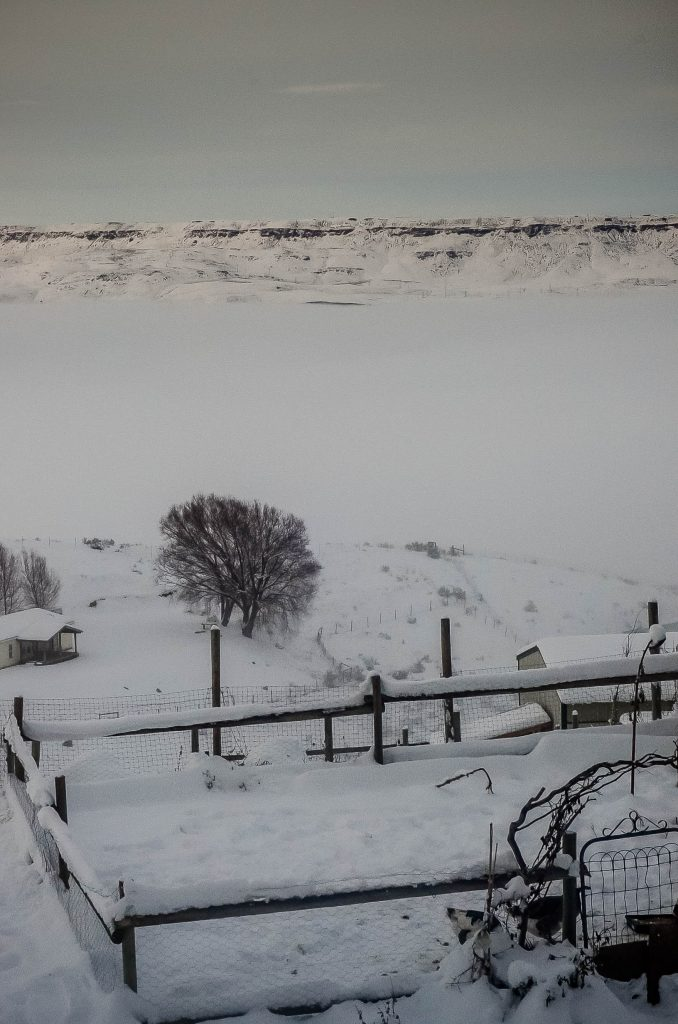 A wet winter on the farm...   The Elliott Homestead