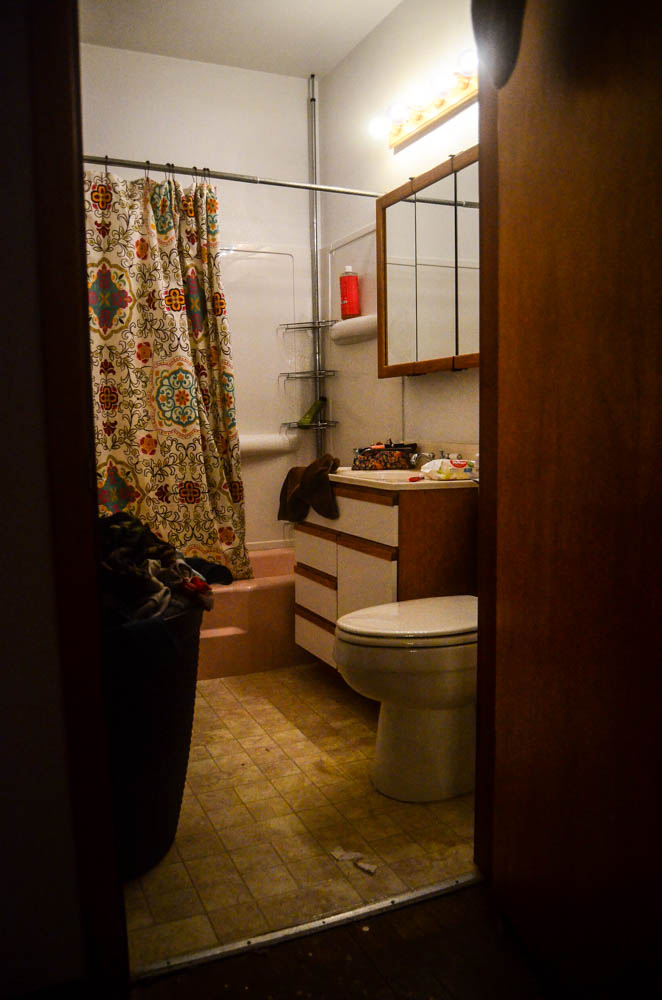 Bathroom remodel, anyone?