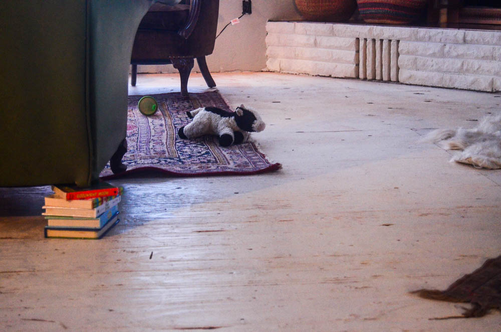 Farm Floor Renovation