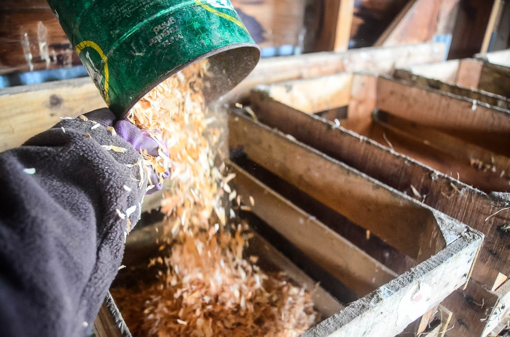 Cleaning Nesting Boxes: Step 2   The Elliott Homestead