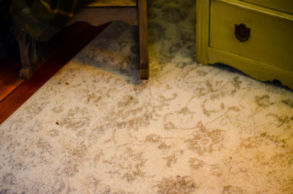 Vintage Nursery: New/Old Looking Rug from Overstock | The Elliott Homestead