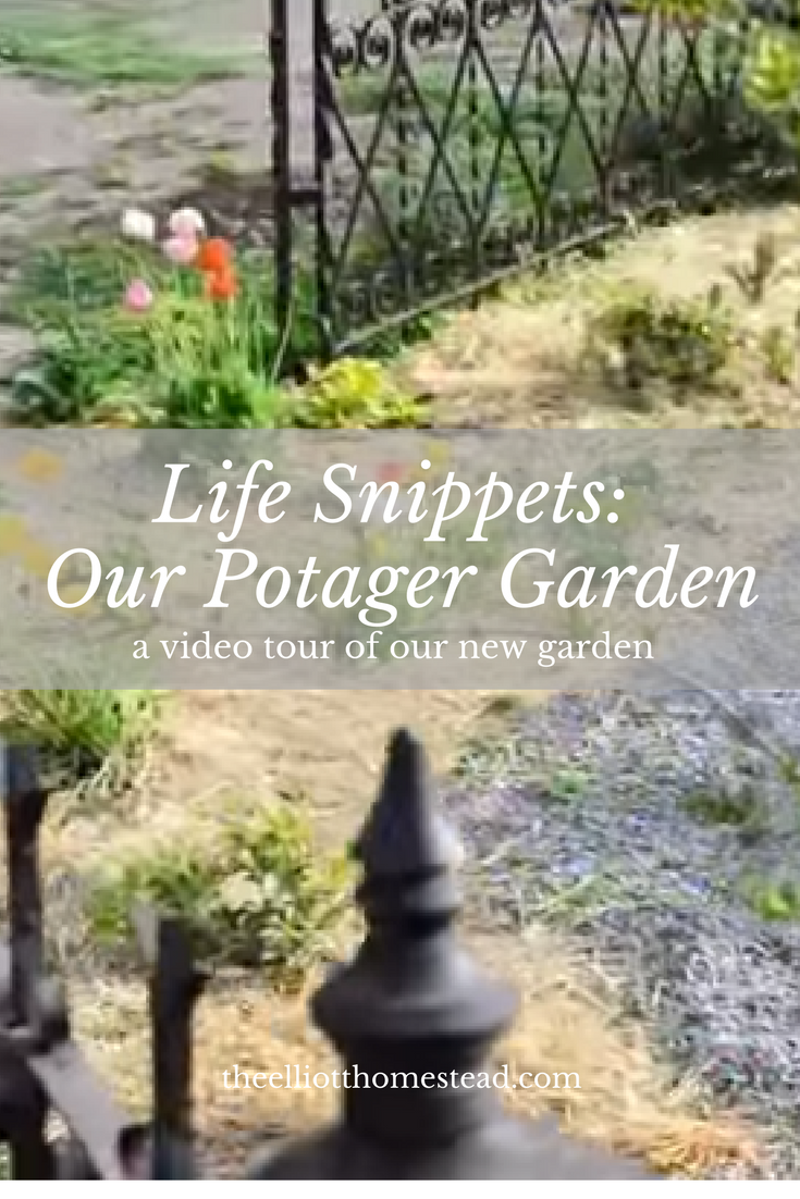 Life Snippets- The New Potager