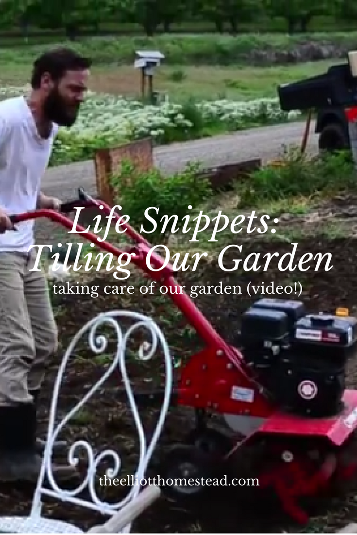 Life Snippets- Tilling the Garden
