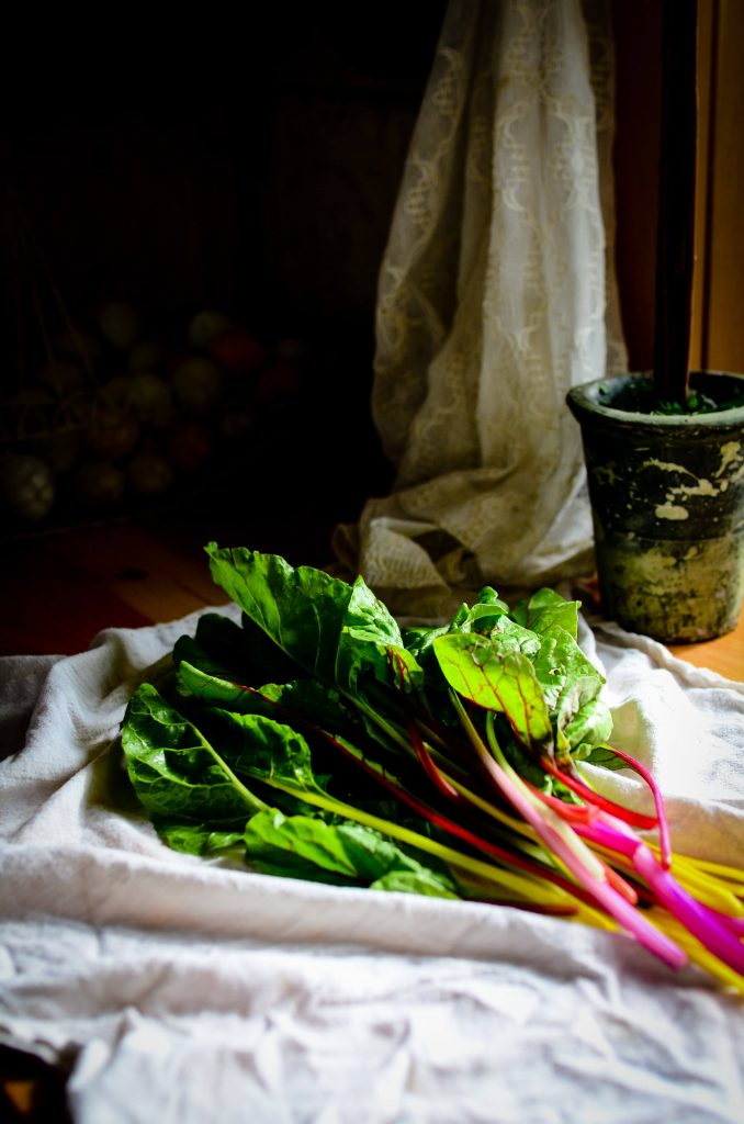 Spring rhubarb | The Elliott Homestead (.com)