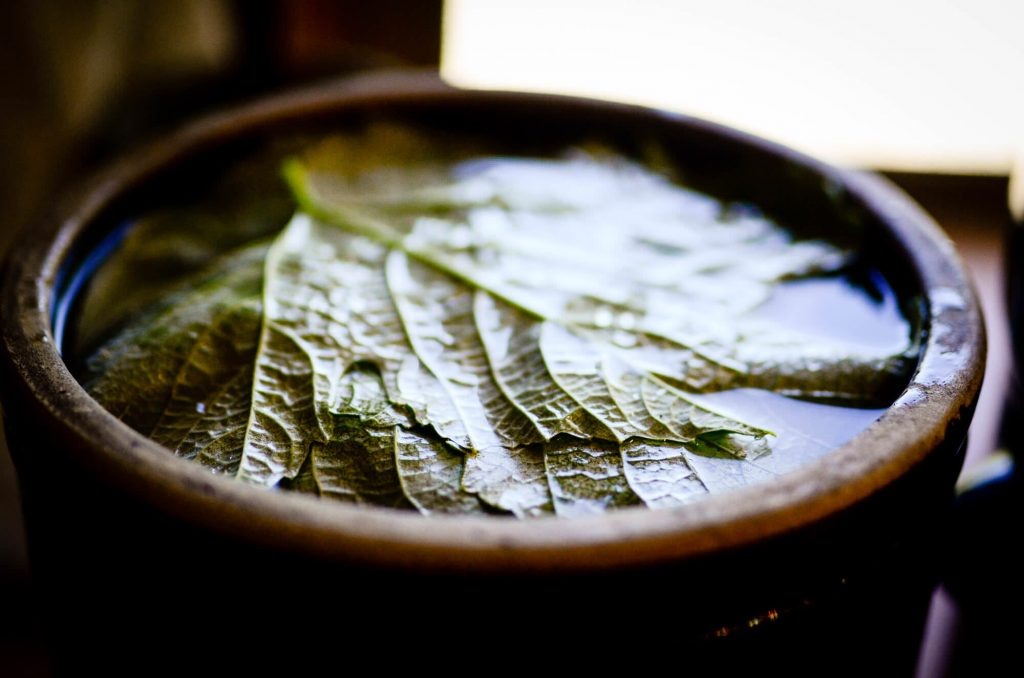 Grape leaves in barrel fermenting pickles