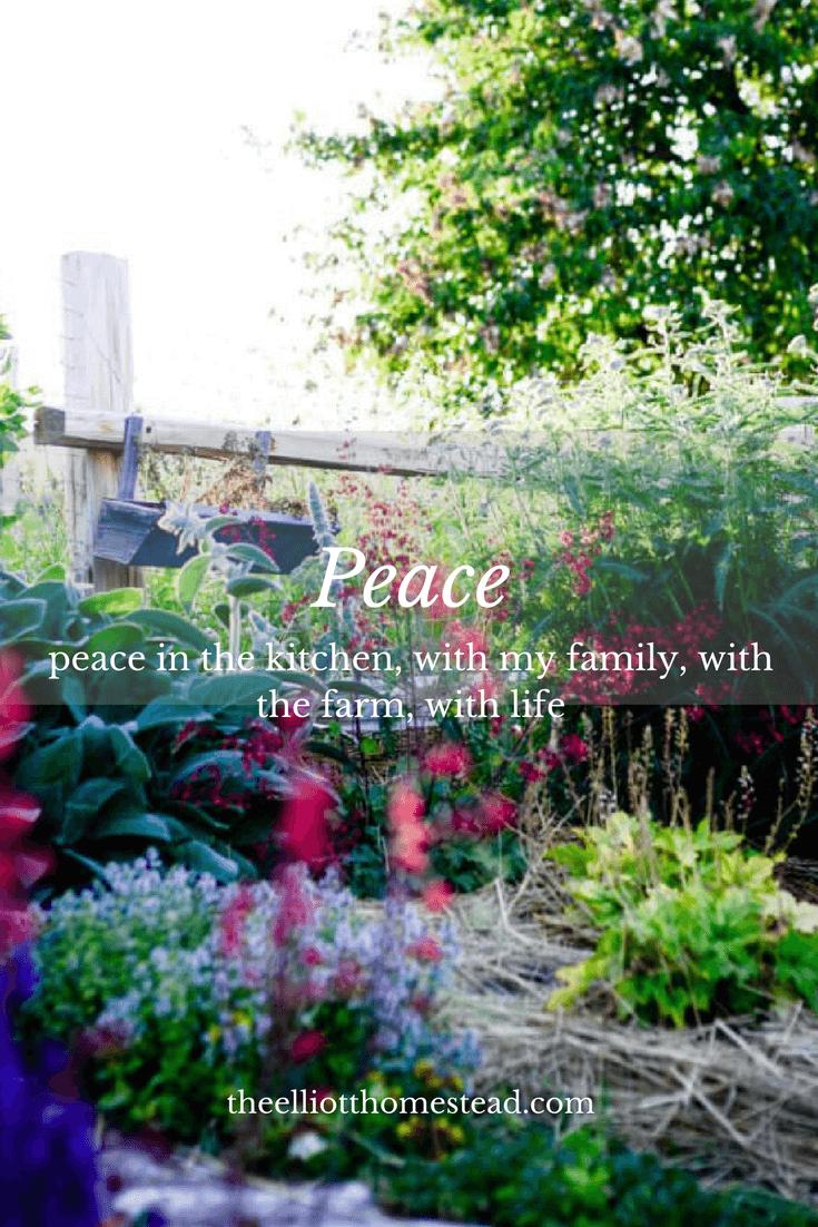 Peace   The Elliott Homestead